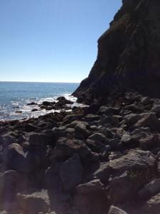 Rocky Pacific Shoreline